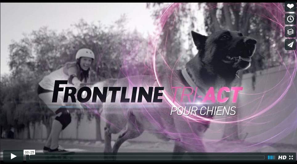 FRONTLINE SOUTH - Joséphine Prod | Société de production de films publicitaires tv et films institutionnels